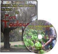 Edible/Medicinal Plants Fort Toulouse