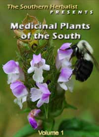 Medicinal Plants of the South Volume 1